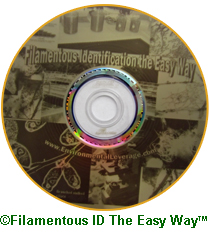 Filamentous ID The Easy Way CD