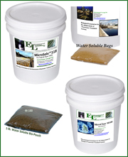 Environmental Leverage Bioaugmentation Bacterial Products Wastewater